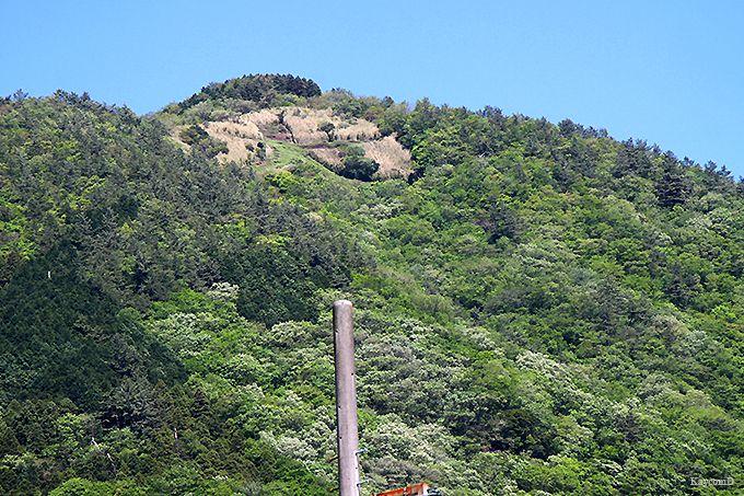 登山口から大文字焼きの「大」の字