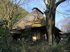 箱根峠越え!大名行列も通った箱根旧街道を箱根関所から湯本までハイキング