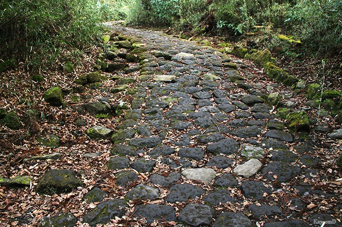 箱根旧街道石畳を歩いて甘酒茶屋へ
