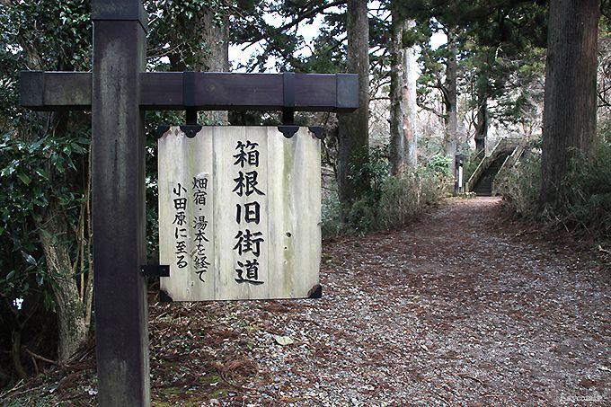 箱根関所から杉並木を通って元箱根へ