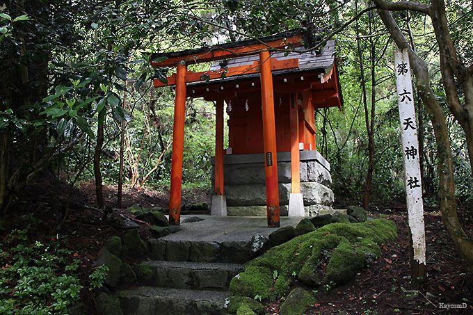 箱根神社と九頭龍神社新宮