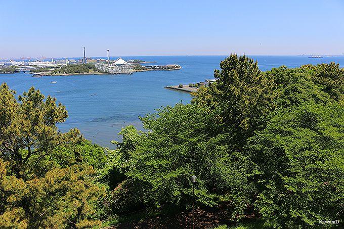 夕照橋〜野島公園展望台