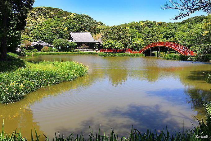 海の公園〜金沢山称名寺と金沢文庫〜金沢文庫駅
