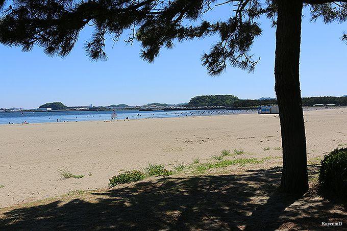旧伊藤博文金沢別邸〜海の公園