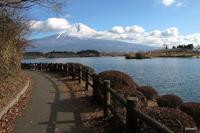 富士山が間近に見られる田貫湖