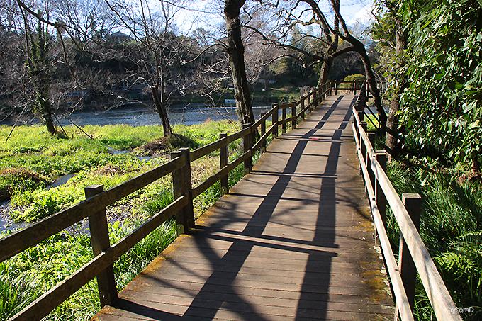 清流を感じながら歩ける散策路