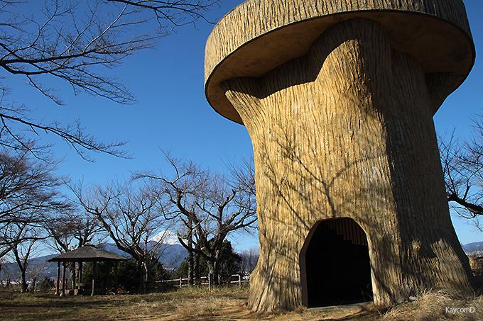 柿田川と狩野川の合流が見られる「本城山公園」