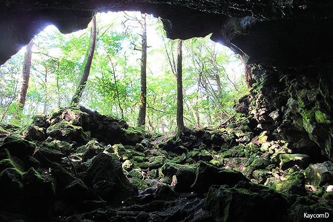 洞窟内から見上げる景色が『キングダム』