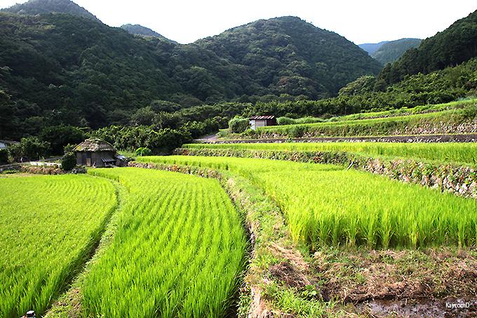 まるで日本昔話の風景「北山の棚田」