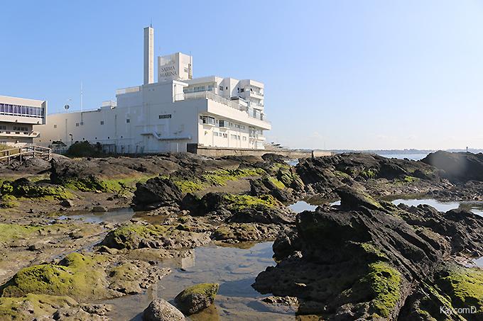 海に囲まれた「佐島マリーナホテル」