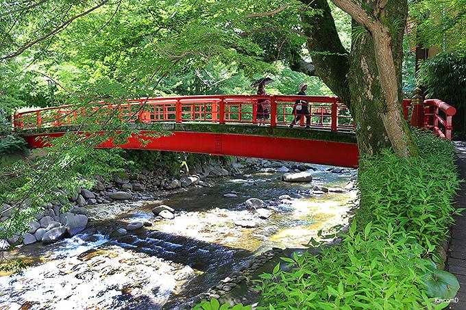 伊豆最古の温泉!修善寺温泉のパワースポットと見所はここ