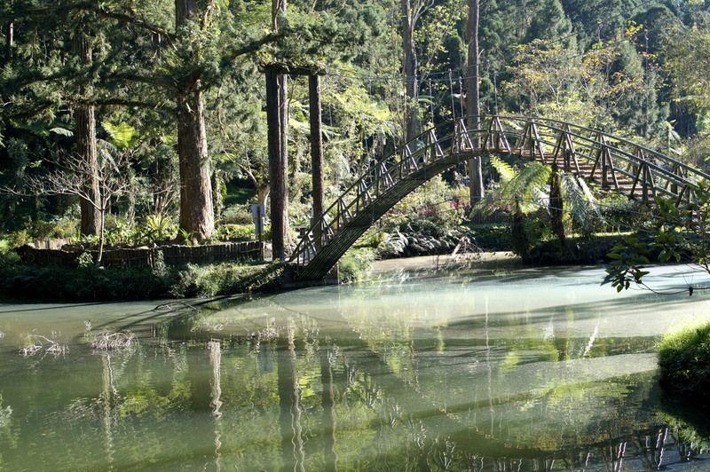徒歩で行ける「渓頭自然教育園区」でマイナスイオンをたっぷり浴びよう!
