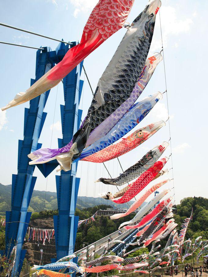鯉のぼり祭りには1,000匹が雄大に泳ぐ!