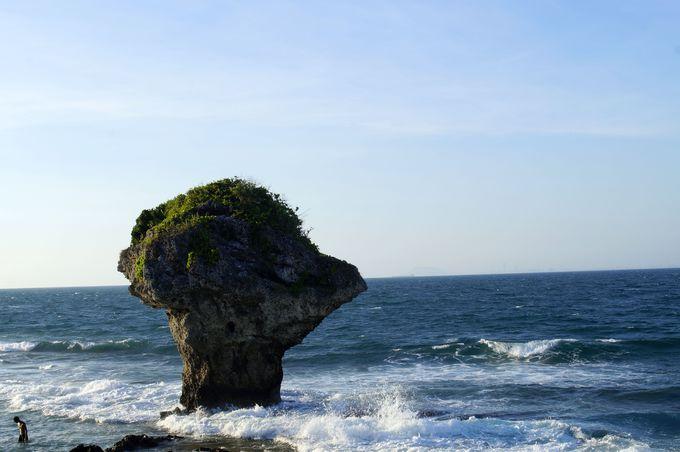 小琉球の代名詞とも言える「花瓶石(花瓶岩)」
