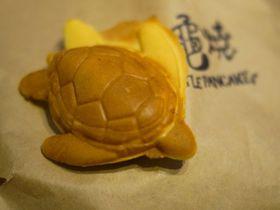飛び魚の卵ピザに海亀焼き!?台湾・小琉球の有名店5選