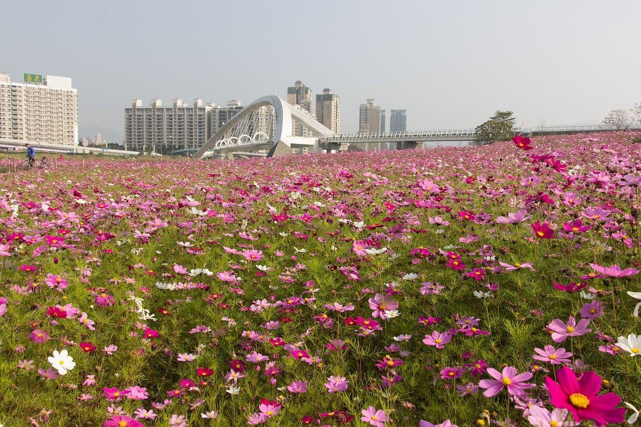 ずばり!台湾のベストシーズンはいつ?