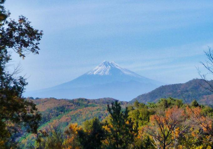 「修善寺自然公園」は紅葉と富士山の絶景スポット!