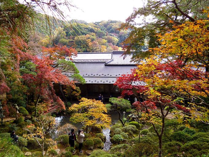 「修禅寺庭園 秋の特別公開」も見逃せない!