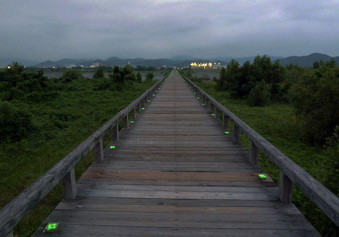 夜も魅力的な蓬莱橋!ドラマや映画のロケに出会えるかも