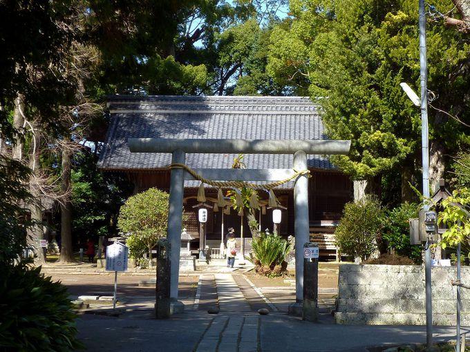 河津桜まつりと一緒にいかが?パワースポット、河津「来宮神社」