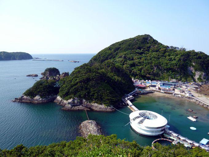季節を問わず絶景を楽しめる!海をのぞむ展望台