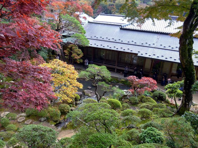 """""""東海第一園""""と呼ばれる修禅寺庭園!11月下旬が拝観のチャンス"""