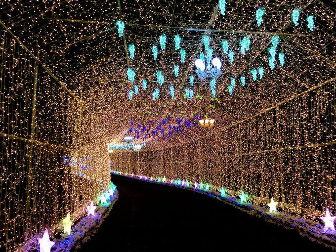 言葉が出ないほど美しい!全長150mの「光のトンネル」