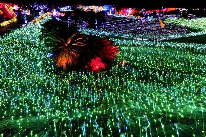「虹のゲートと夜空」の向こうは、驚きの世界!