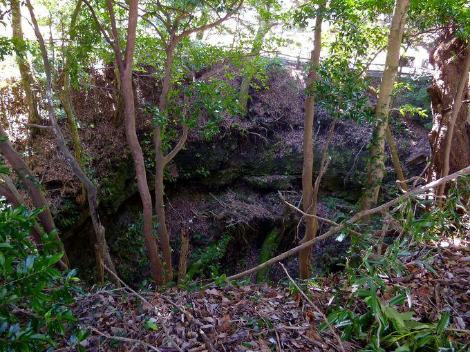 伝説の「大蛇穴」にスコリアラフト!「さくらの里」は注目のジオサイト