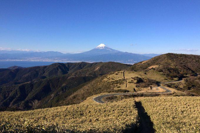 駐車場から15分!達磨山の山頂で大パノラマを堪能