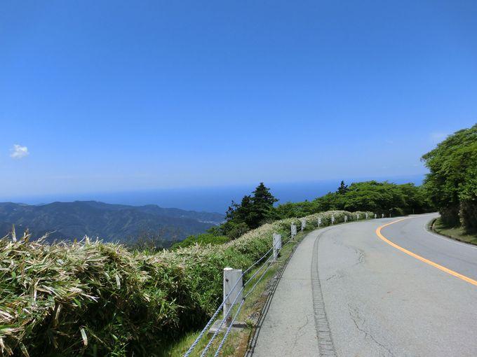 見晴らし最高!富士山と駿河湾の絶景ライン