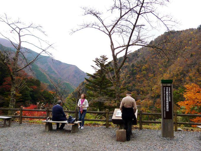 「飛龍橋」は渓谷と紅葉が美しい!