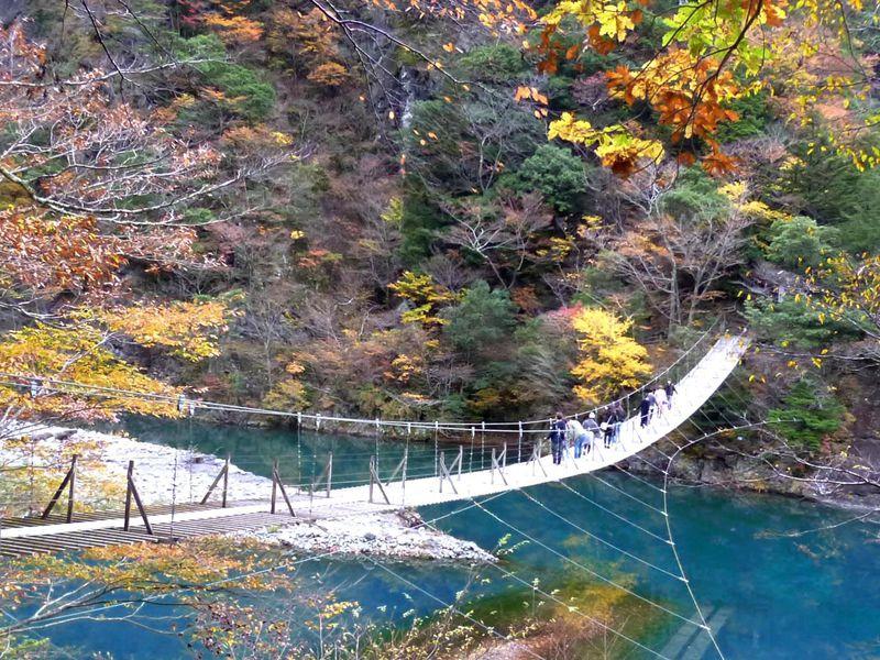 SL・紅葉・夢の吊橋!静岡「寸又峡温泉」の絶対見逃せない楽しみ方