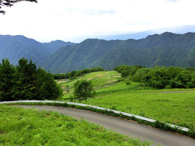 「中村農園」は南アルプスを臨む村の標高1500mにある農園!