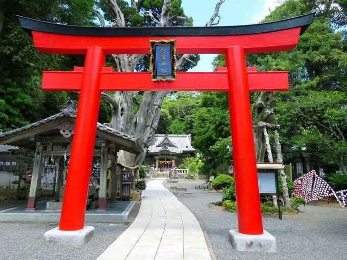 縁結びのパワースポット、白浜神社とは!