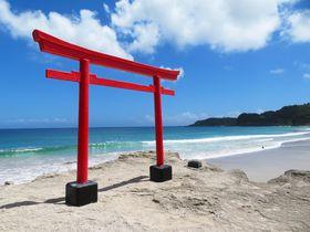 白浜海岸の絶景鳥居から本殿まで!伊豆下田「白浜神社」を巡るコツ
