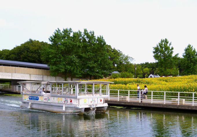 花の名所「浜名湖ガーデンパーク」とは!