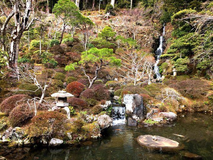 修禅寺庭園を鑑賞できるのは、年2回のみ!