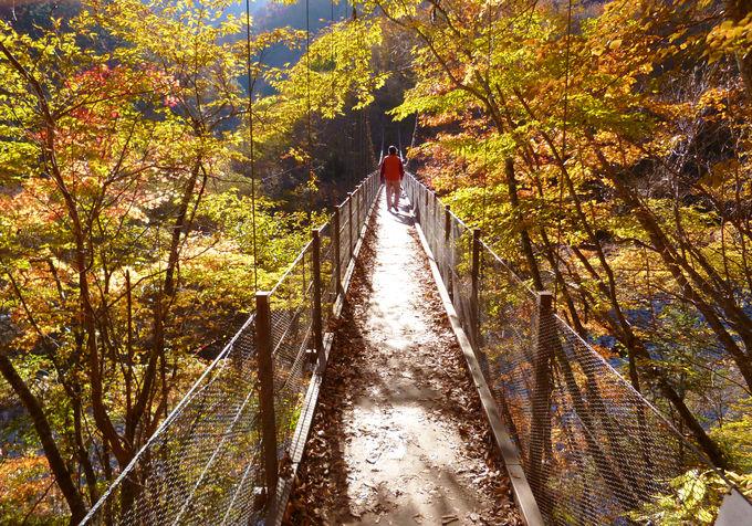 国内屈指の渓谷美と紅葉のコラボを楽しもう!