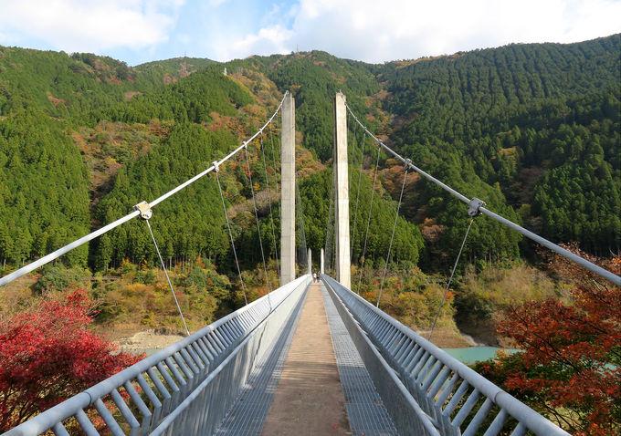 南アルプス接岨大吊橋&八橋小道ラブ・ロマンス・ロードへ!