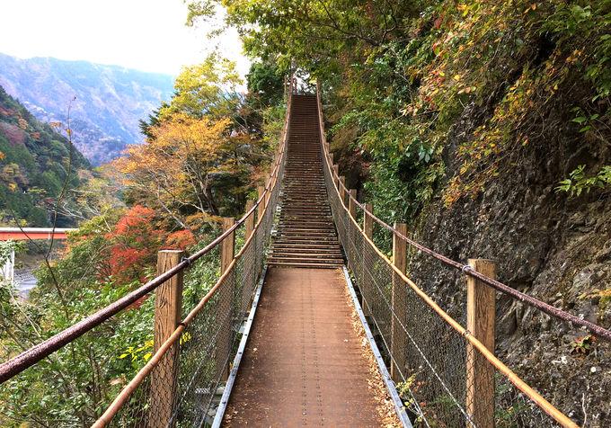 必見!日本一長い階段式吊橋「宮沢橋」