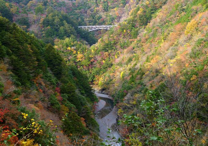 高さ日本一の鉄道橋「関の沢鉄橋」!長島ダム周辺もお薦め