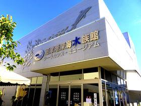 沼津港深海水族館&深海アトラクション!港八十三番地で深海を楽しもう