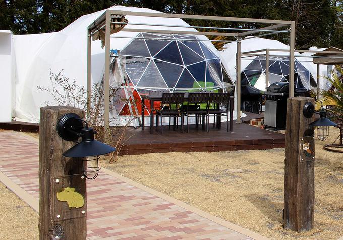 伊豆シャボテンヴィレッジに絶景グランピング施設が誕生!