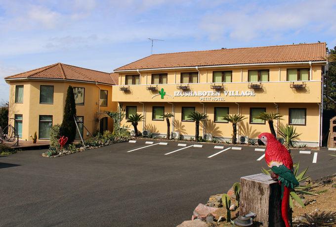 コンセプトルームが大人気!大室山麓の可愛いホテル