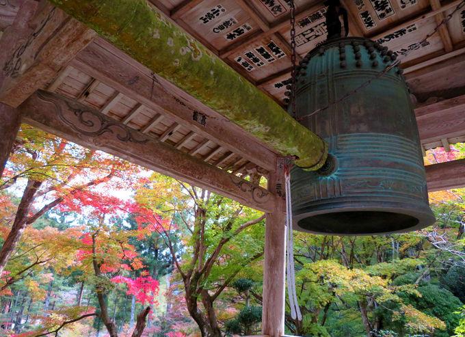 毎年11月23日は「紅葉まつり」!近くの小國神社もお薦め