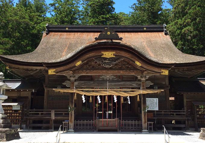 静岡県「小國神社」本殿から奥宮・奥磐戸神社まで!パワースポット巡り