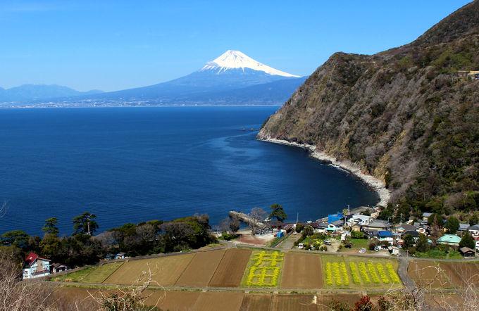 西伊豆の無料展望スポット5選!富士山&駿河湾の絶景を