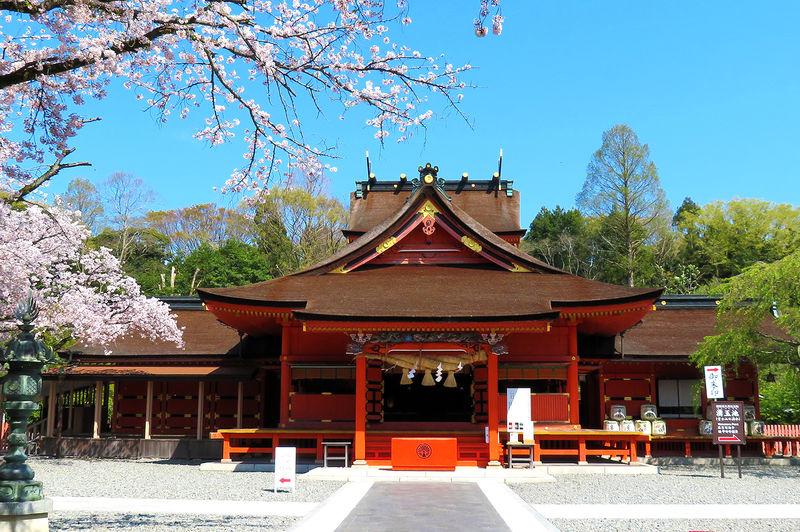富士山がご神体!富士宮市「富士山本宮浅間大社」を巡るポイント