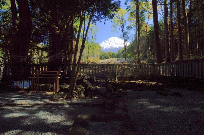 本殿が無い!「山宮浅間神社」は最も古い形式の不思議な神社